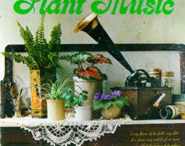 Hey Joe Guitar New York music school Piano, flute, violin lessons, NYC