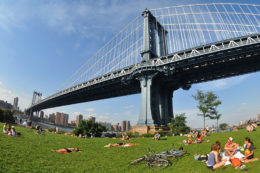 UNDER THE BRIDGE: GEM OF A BROOKLYN NEIGHBORHOOD!