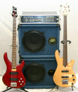 ELECTRIC BASS: AN INSTRUMENT YOU CAN PICK AT